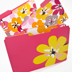 Fun, colored file folders